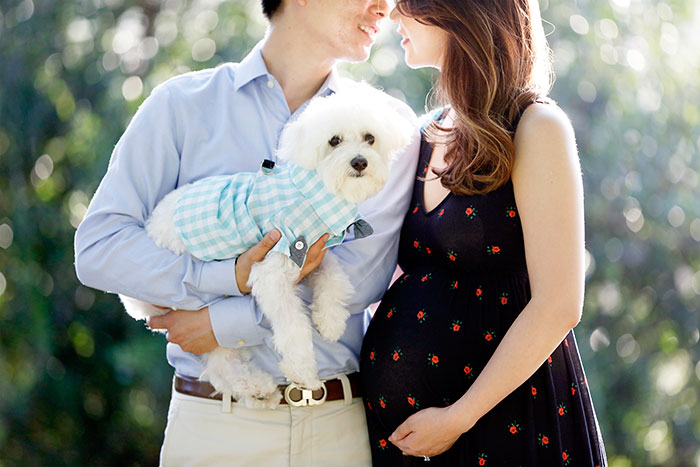 maternity; maternity session; maternity shoot; maternity photoshoot; pregnancy; orange county photoshoot; orange county maternity session; maternity session with dog; maternity shoot with dog; love and lemonade; nina suh; canon 5d mark 3; asos
